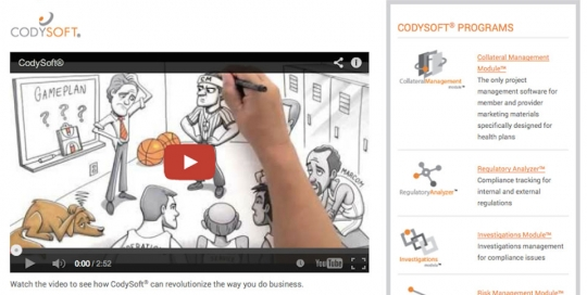 Cody Consulting Website